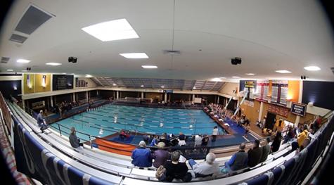 Lions and Lionettes win swim meet vs. Sherman