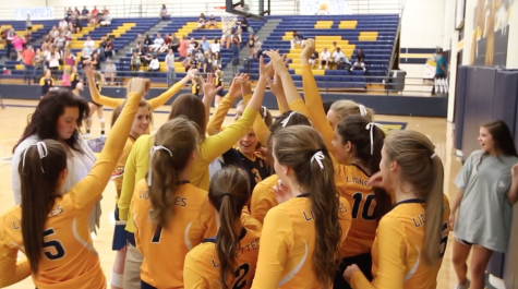 Lionettes win homecoming volleyball game against Sherman