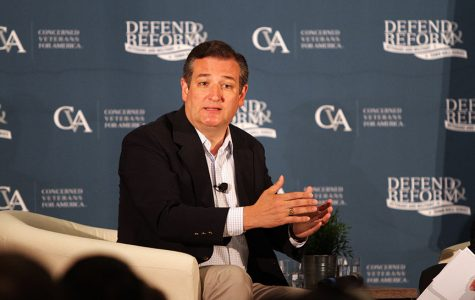 Cruz discusses health care at McKinney town hall for veterans